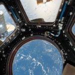 На МКС напечатали живые ткани, на Земле подтвердили успех эксперимента