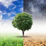 Mastercard и стартап Doconomy запустили приложения для отслеживания углеродных выбросов