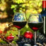 Отечественные виноделы получат поддержку государства