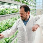 Умные томаты: как издатель игры «Веселый фермер» теперь зарабатывает на открытии реальных ферм