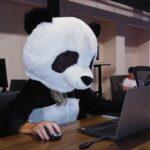 Стартап с белорусскими корнями PandaDoc привлек инвестиции на 30 миллионов долларов